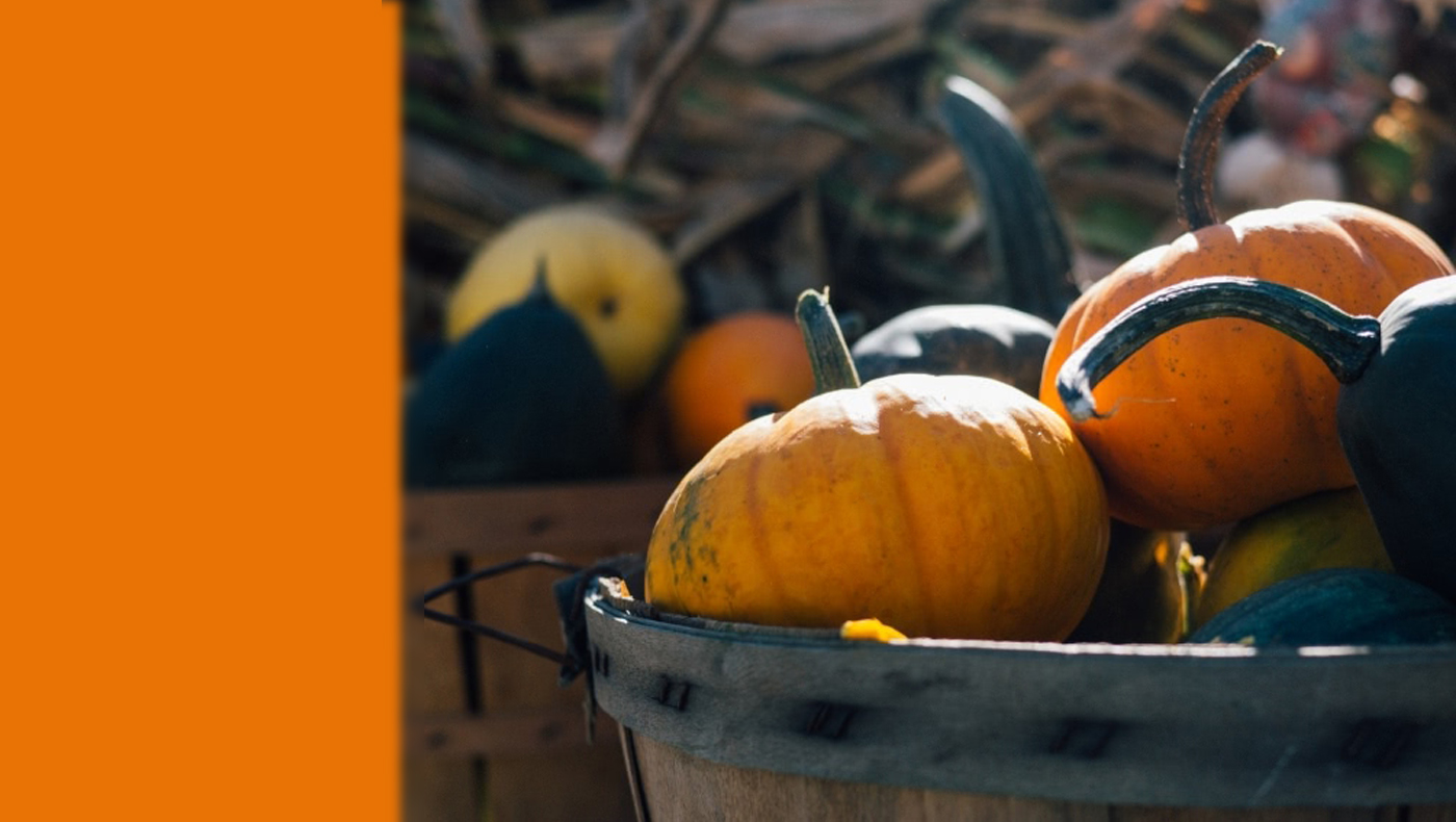 Fall Fun at HCJ on October30
